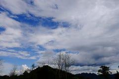 Widok góry, niebo, leje się wśród zielonych lasów Zdjęcia Royalty Free
