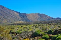 Widok góry, Tenerife, wyspy kanaryjska, Hiszpania Obrazy Stock