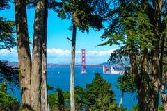 Widok Golden Gate Bridge przez drzew w ziemiach Kończy parka Fotografia Stock