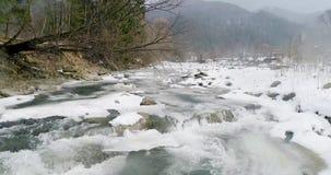 Widok halna rzeka w Carpathians w zimie zbiory wideo