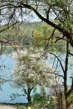 Widok halny jezioro park Zdjęcie Royalty Free