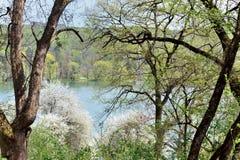 Widok halny jezioro park Obrazy Royalty Free
