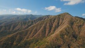 Widok halny lasu krajobraz bali Obraz Stock