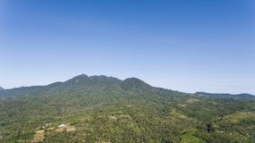 Widok halny lasu krajobraz bali Zdjęcie Stock
