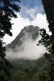 Widok halny szczyt z mgły kołysaniem się wewnątrz Fotografia Stock