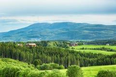 Widok halny Vassfjella obrazy stock