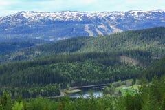 Widok halny Vassfjellet i rzeczny Nidelva, Norwegia fotografia royalty free