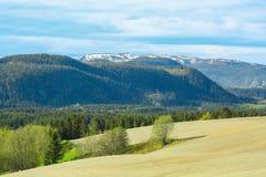 Widok halny Vassfjellet, Trondheim, Norwegia obraz royalty free