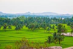 Widok Hampi z ryżowymi polami, India Obrazy Stock