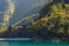 Widok Hasst rzeka od Ryczeć Billy spadki Tropi, Lokalizuje w Mt Aspiruje parka narodowego, Nowa Zelandia obraz royalty free