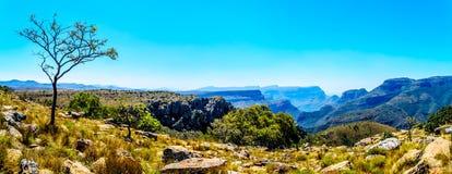 Widok highveld i Blyde Rzeczny jar wzdłuż panoramy trasy zdjęcia stock