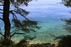 Widok jasna woda i piękny drzewo blisko wodnego Lopud, Chorwacja panorama zdjęcie stock