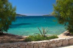 Widok jasny morze między dwa tamarix drzewami Obrazy Royalty Free
