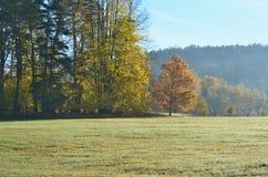 Widok jesieni krajobraz, południowa cyganeria, republika czech Fotografia Royalty Free