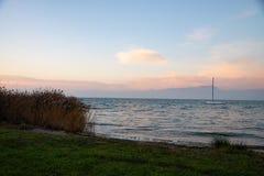 Widok Jeziorny Garda blisko Peschiera, Włochy Plaża trawa z płochą obraz royalty free