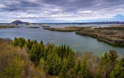 Widok Jeziorny Myvatn teren w Północnym Iceland Obraz Royalty Free