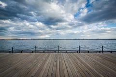 Widok Jeziorny Ontario przy Harbourfront w Toronto, Ontario Fotografia Royalty Free
