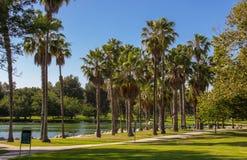 Widok jezioro przy mila kwadrata regionalności parkiem fotografia stock