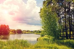 Widok jezioro z drzewami na brzeg Zdjęcie Stock
