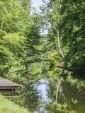 Widok jezioro z mnóstwo drzewami i roślinnością odbijał w wodzie obrazy stock