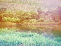 Widok jezioro z zielonym drzewem i mountian behind Obraz Stock