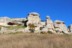 Widok Kamienni sfinksy obrazy stock