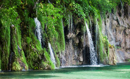Widok kaskada w Chorwackich parka narodowego Plitvice jeziorach Fotografia Royalty Free