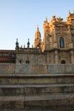 Widok katedra Santiago Fotografia Stock