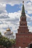 Widok Katedralny Chrystus Wybawiciel Obraz Stock