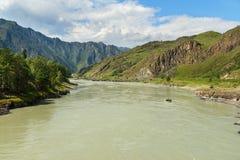 Widok Katun rzeka Altai republika, Rosja Fotografia Royalty Free