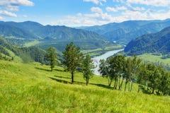 Widok Katun rzeka od halnego wielbłąda Altai republika, Rosja Fotografia Stock