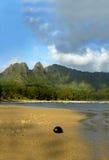 widok kokosowy Fotografia Stock