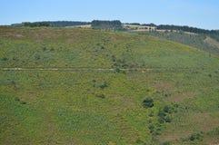 Widok krajobrazy łąki góry Galicia Podróż Kwitnie naturę zdjęcia royalty free