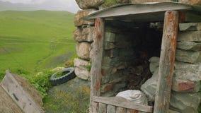 Widok krypta jagnięcy ` s który używa jak paliwo srał zbiory wideo