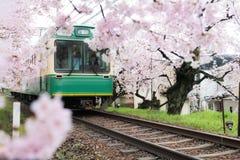 Widok Kyoto lokalny pociąg podróżuje na liniach kolejowych z rozkwitać czereśniowych okwitnięcia wzdłuż kolei w Kyoto, Japonia zdjęcie stock