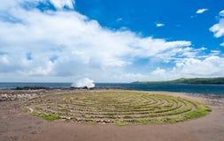 Widok labitynt przy Makaluapuna punktem w Maui Hawaje Obrazy Royalty Free