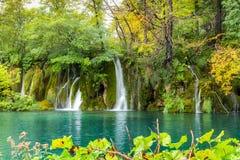 Widok lasowy jezioro z przejrzystą turkus wodą, skalisty wate Zdjęcie Stock