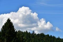 Widok lato chmura przeciw niebieskiemu niebu zdjęcia stock