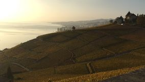 Widok Lavaux tarasuje, jeziorny Léman, Szwajcaria obraz royalty free