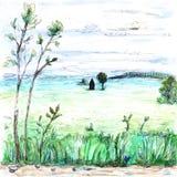 Widok lekki białawy mgłowy lata pole i lasu dom zasadza chmury nieba drzew niedźwięcznej trawy akwareli farby drogową ilustrację ilustracji
