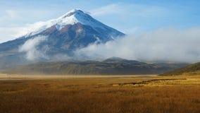 Widok Limpiopungo laguna z wulkanem Cotopaxi w tle na chmurnym ranku Obraz Stock
