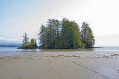 Widok Long Beach w Tofino, popularny miejsce przeznaczenia w Vancouver wyspie, Kanada fotografia royalty free