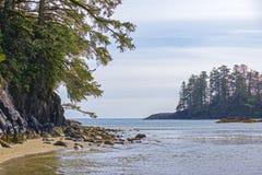 Widok Long Beach w Tofino, popularny miejsce przeznaczenia w Vancouver wyspie, Kanada obraz stock