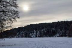 Widok lukrowy jezioro Zdjęcia Royalty Free