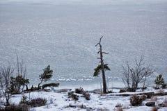 Widok lukrowy Oslo fjord w zimie Obrazy Royalty Free
