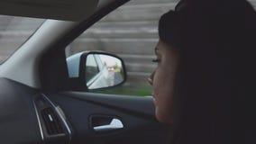 Widok młody brunetki dziewczyny obsiadanie wśrodku napędowego samochodu na miejscu pasażera dzień motyliego trawy sunny swallowta zbiory wideo