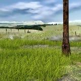 Widok mały gazon z obfitością trawa, dolina royalty ilustracja