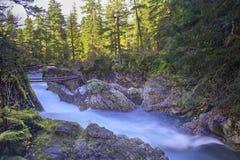 Widok Mały Qualicum Spada w Vancouver wyspie, Kanada zdjęcie royalty free