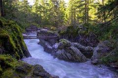 Widok Mały Qualicum Spada w Vancouver wyspie, Kanada zdjęcie stock