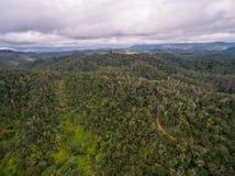 Widok Madagascar Zdjęcie Stock